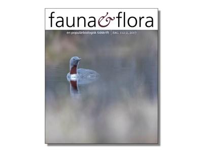 faunaochflora-nr-2-2017.jpg