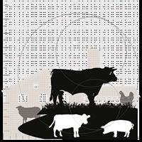 agronom-husdjur1.png