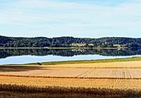 Ellenösjön-110817_panorama4-240.jpg