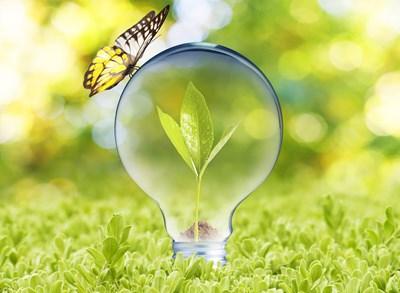 SLU Holding stödjer innovationer.