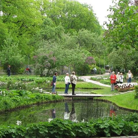 Parkmiljö. Foto Marcus Hedblom