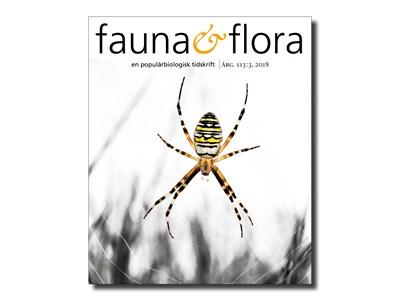 artdatabanken.se-faunaochflora-nr3-2018.jpg