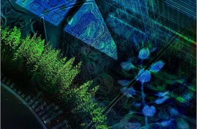 hightech_2017_750_skog_urban.jpg