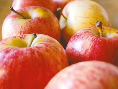 apples880.jpg