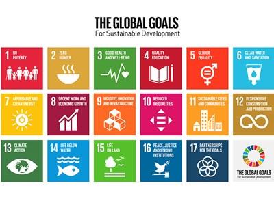 the-global-goals-grid-color-880x660.jpg