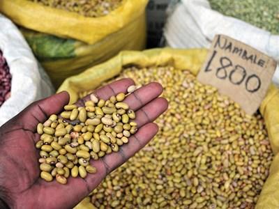 Bean-Market-in-Kampala-Uganda-Neil-Palmer-CIAT-880x660.jpg