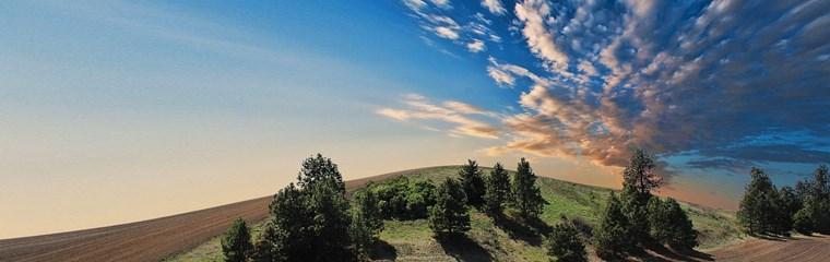 farmland-768603_1280.jpg