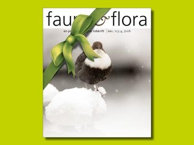 artdatabanken.se-faunaochflora-gavobevis.jpg