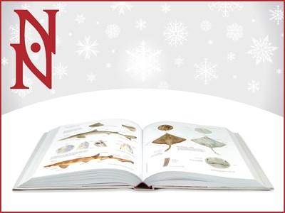 Uppslagen bok mot ljusgrå bakgrund med vita snöflingor